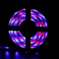 LED лента LUX 5050 RGB 60SMD/м (в силиконе) 5м 12V